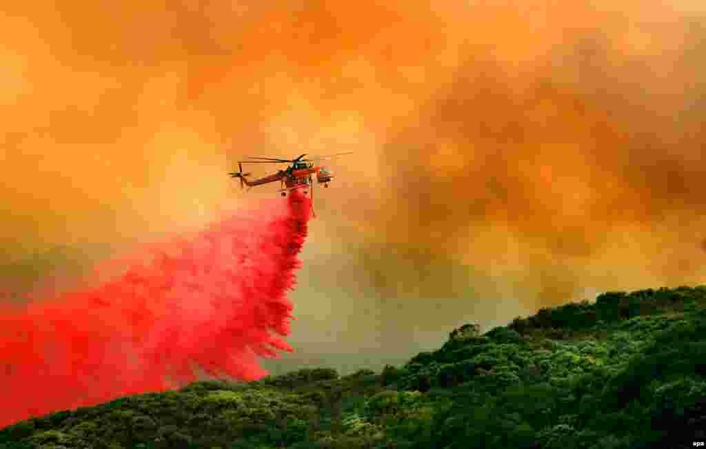 По данным лесников, в регионе горят свыше 14 тысяч гектаров