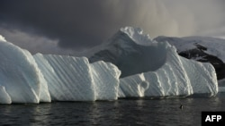 An iceberg off the western Antarctic peninsula where scientists are starting an ambitious environmental research project.