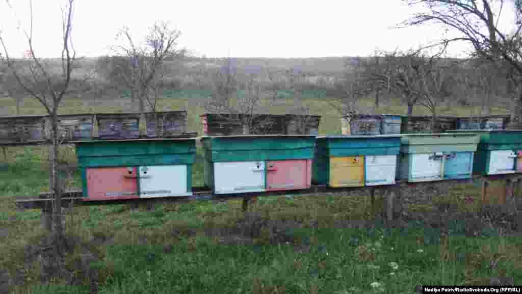 У Середньому добре розвинуте бджільництво