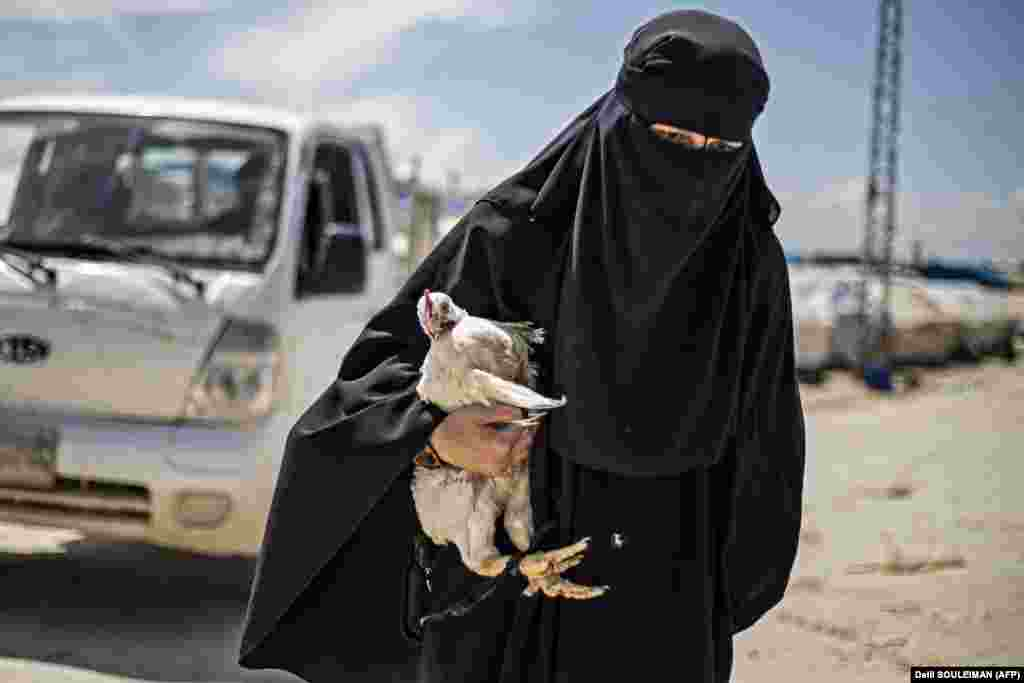 A woman displaced from Syria's eastern Deir Ezzor Province carries a hen as she walks in the Al-Hol camp for displaced people in Al-Hasakeh Governorate in northeastern Syria. Dislodged in a final offensive by a Kurdish-led ground force and coalition air strikes, thousands of wives and children of IS fighters have flooded in from a string of Syrian villages south of the Al-Hol camp in recent months. (AFP/Delil Souleiman)