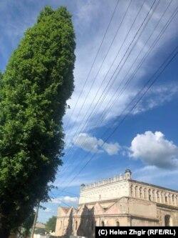 Синагога в Жовкве, 2019
