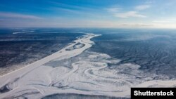 Тайга в Якутии. Иллюстративное фото.