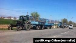 Тракторы, загруженные навозом при въезде в Самаркандскую область из соседней Джизакской области, 11 января 2021 года.