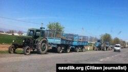 Самарқанд вилоятига Жиззахдан кириб келаверишдаги йўл ёқасида гўнг ортилган тракторлар - 11 январь, 2021