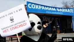 Никакие акции протеста и митинги пока не могут повлиять на судьбу озера Байкал