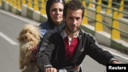 Iran -- A dog rides with a couple on a motorcycle in Tehran, 12May2011
