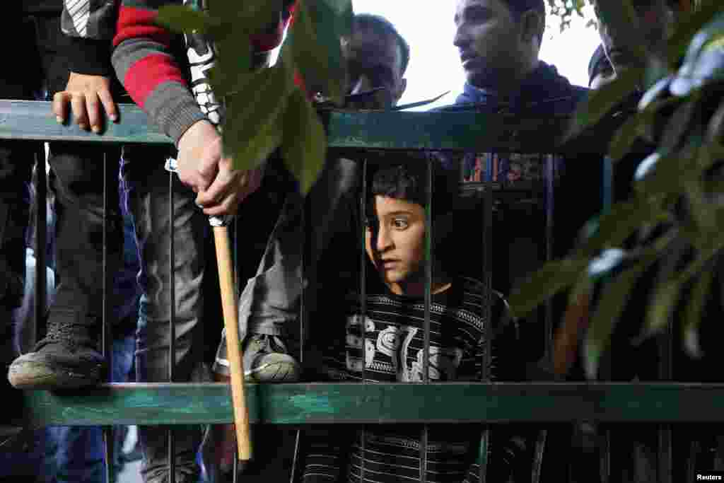 A Palestinian boy watches as men carry the body of Saeed Jaser Ali, 85, during his funeral near Nablus.According to witnesses, Ali died on January 2 after inhaling tear gas fired by Israeli troops to disperse protesters in the occupied West Bank. (Reuters/Mohamad Torokman)