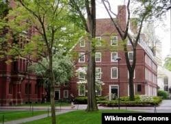Кэмбридждегі Гарвард саябағы. Сурет ашық ресурстан алынған