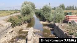 Өзбекстан мен Қырғызстан шекарасындағы су арнасы.
