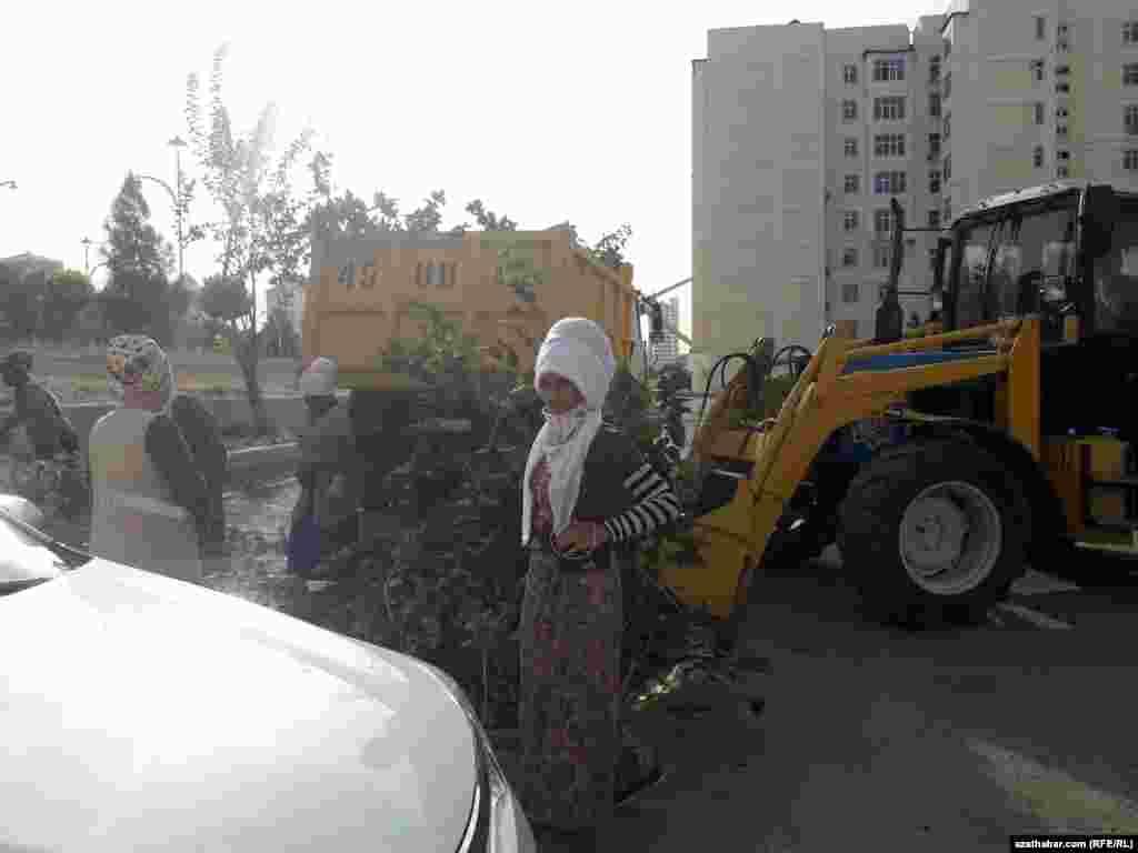 Ашхабадские коммунальщики осуществляют работы по благоустройству.