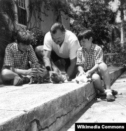 Heminquey Kubadakı evində oğlanları və pişikləri ilə