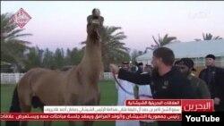 Кадыров с конем, подаренным Путиным королю Бахрейна