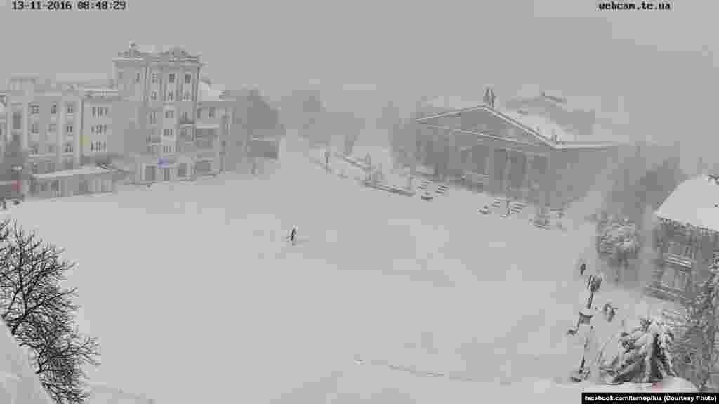 «Один у полі воїн» – так прокоментували тернопільці одну із перших світлин «осіннього» снігу в місті