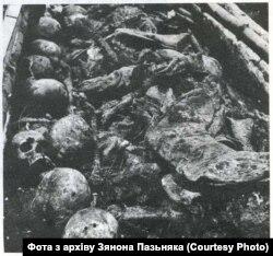 Иллюстрация из статьи Зенона Позняка о расстрелах в Куропатах. Обнаруженные в Куропатах останки. Фото из архива Зенона Позняка
