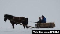 Iarna la Pelinia