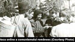 """Membri ai CAP """"Steagul lui Lenin"""", Păuleşti, Baia Mare – în timpul lucrărilor legumicole.(1950) Sursa: Fototeca online a comunismului românesc; cota: 1/1950"""