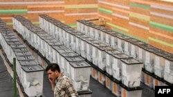 Disa kuti votimi në Tiranë