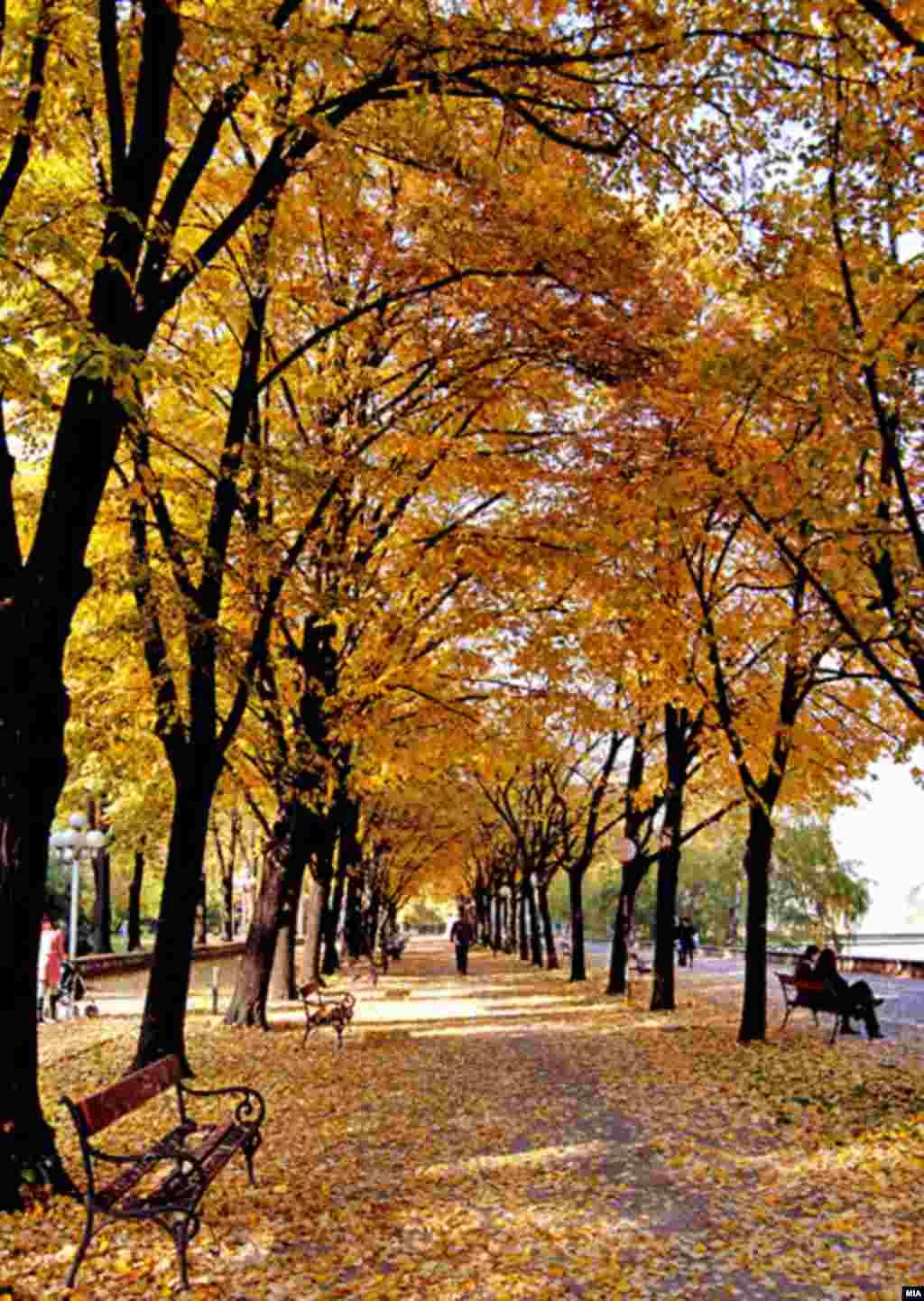 Осенние Балканы. В городском парке Скопье, Македония