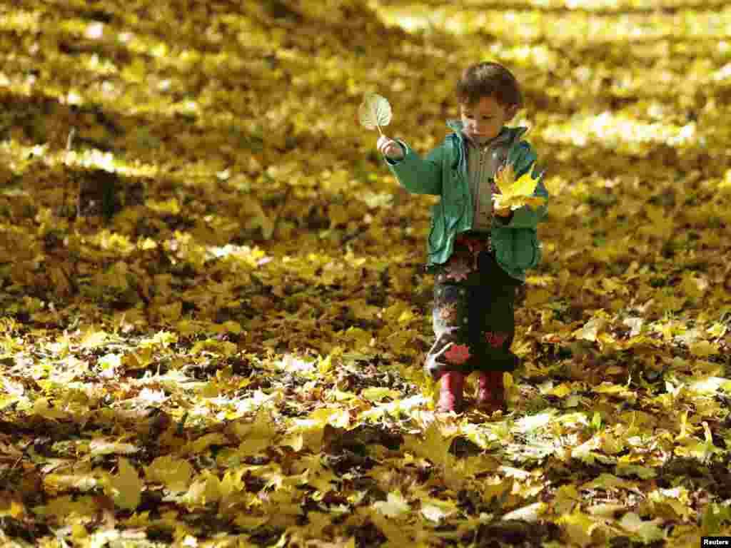 Мальчик гуляет по осеннему парку в Ставрополе, на юге России