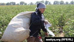 It's estimated that around 1 million people are forced into Uzbek fields each year to pick cotton.