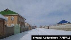Винсовхоз айылындагы жаңы үйлөр.