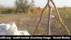 Никто из узбекских чиновников не хочет даже слышать о том, откуда у фермеров накопились долги.