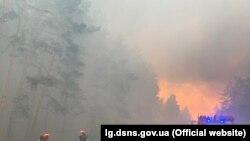 Пожежа в Новоайдарському районі Луганщини, 7 липня 2020 року