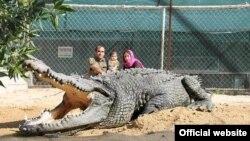 پرورش تمساح در قشم. عکس از وبسایت نوپک