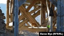 Рыжий кот возле башни Донжон