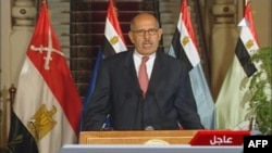 An image grab taken from Egyptian state TV shows Egyptian National Salvation Front leader Muhammad ElBaradei delivering a statement on July 3, following the announcement of the ousting of Islamist President Muhammad Morsi.