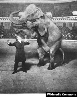Фокус Гудини с исчезающим слоном, Нью-Йорк, 1918