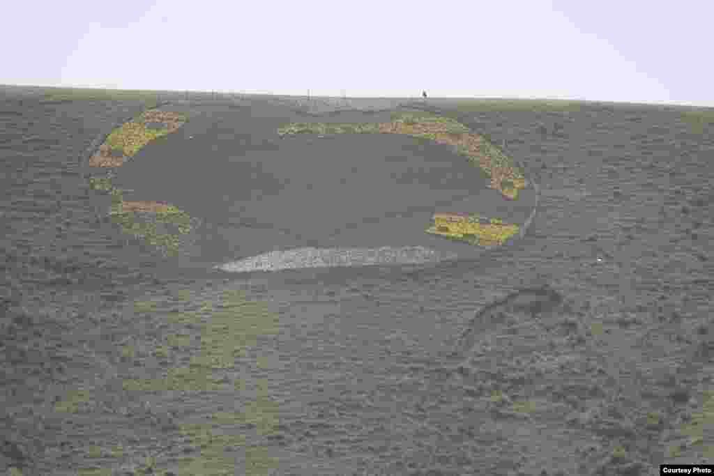Ала-Тоодо гүлдөгөн Голландия жоогазындары - Ар түстөгү жоогазындардын калың катмары Жер планетасына окшоп тигилди.