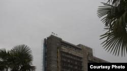 Приятным событием недели стала инициатива жителей города Гагра, поддержанная властями города, о высадке слоновых пальм