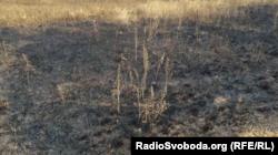 Знімок журналіста Радіо Свобода поповнив доказову базу Міжнародної слідчої групи