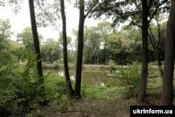Гайдамацький ставок у Холодному Ярі, де, за легендою, гайдамаки під час Коліївщини освячували зброю