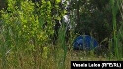 Šator migranata skriven u šumici