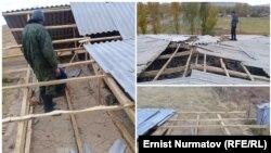 Последствия шквального ветра в Таласской области КР. 19 октября 2017 г.