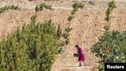 Pamje nga një fshat në kufirin libanezo - izraelit