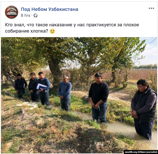 Uzbekistan - Punishment for farmers, Cotton 2018