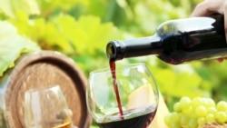 Будущее крымских виноделов