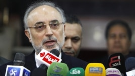 Iranian Foreign Minister Ali Akbar Salehi (file photo)