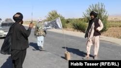گروه طالبان در شاهراه کندهار-کابل