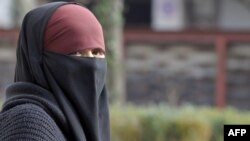 A woman in the French city of Lyon wears a niqab, one type of full Islamic veil.