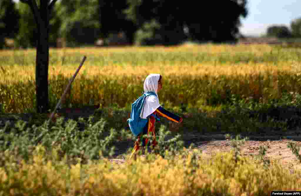 An Afghan girl walks to school along a field on the outskirts of Mazar-e Sharif. (AFP/Farshad Usyan)