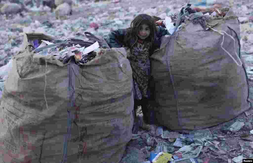 A young garbage collector stands between sacks of refuse in a dump on the outskirts of Kabul. (Reuters/Adnan Abidi)