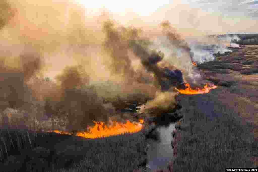 10 квітня у 30-кілометровій зоні відчуження ЧАЕС, неподалік від Прип'яті і Чорнобиля, палають лісові пожежі. Виконувач обов'язків голови Державної екологічної інспекціїЄгор Фірсов 14 квітня заявив, що пожежникам вдалося остаточно загасити вогонь.