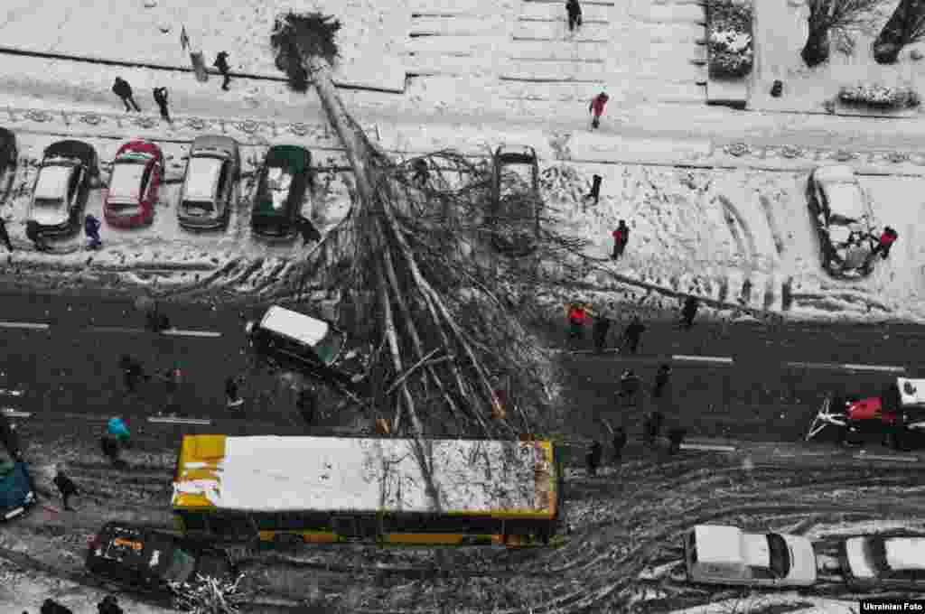 Passersby inspect a huge tree that fell on a bus and parked cars near the Palats Sportu subway station in the Ukrainian capital, Kyiv. (Ukrainian Foto)