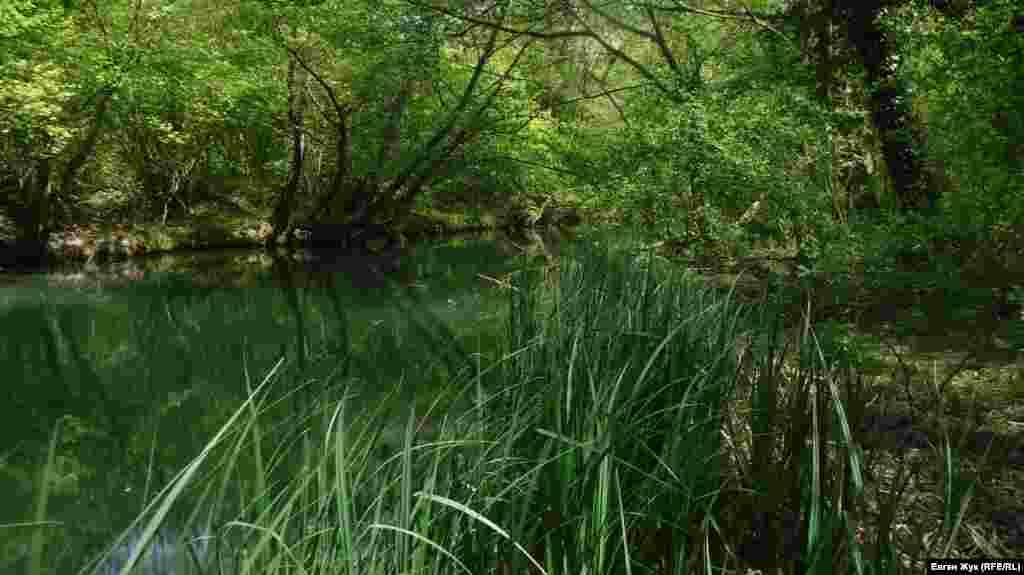 На карті Федора Чорного 1790 року річка позначена, як Кірмень, а академік Петер Симон Паллас згадує її в своїх творах як Біюк-Узень або Казикли-Узень. Більше фото з подорожі з Алсу в Чоргунь із краєвидами Чорнорічинського каньйону – у фотогалереї