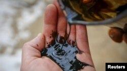 Алақандағы мұнай шикізаты. Қазақстандағы кеніштердің бірінде түсірілген сурет. 22 қаңтар 2016 жыл.