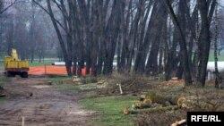 Высяканьне дрэваў у Севастопальскім парку ў Менску, 13 красавіка 2009